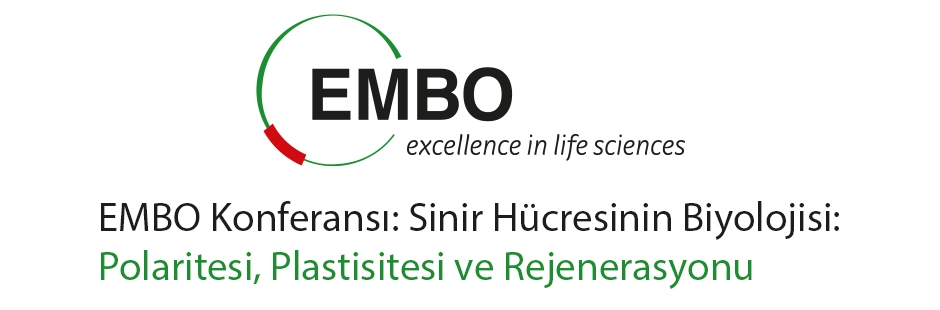 EMBO Konferansı: Sinir Hücresinin Biyolojisi: Polaritesi, Plastisitesi ve Rejenerasyonu, 7-10 Mayıs 2017, Heraklion, Yunanistan
