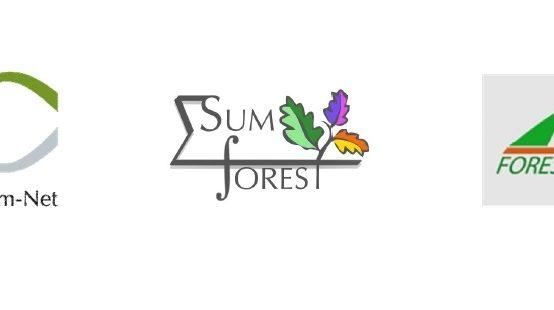 Forest Value Yenilikçi Orman Temelli Biyoekonomi Çağrı Ön Duyurusu